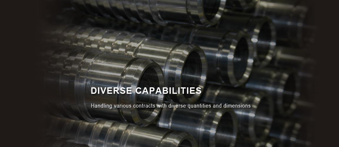 diverse-capabilities